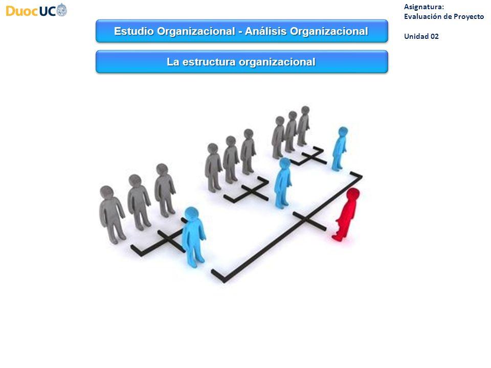 Estudio Organizacional - Análisis Organizacional