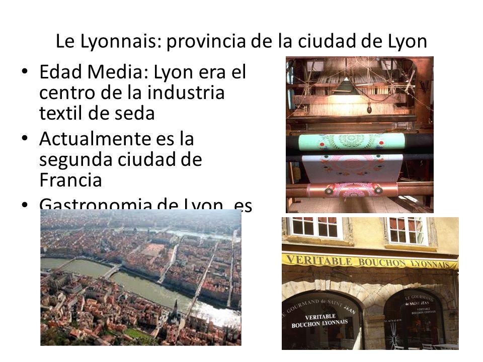 Le Lyonnais: provincia de la ciudad de Lyon