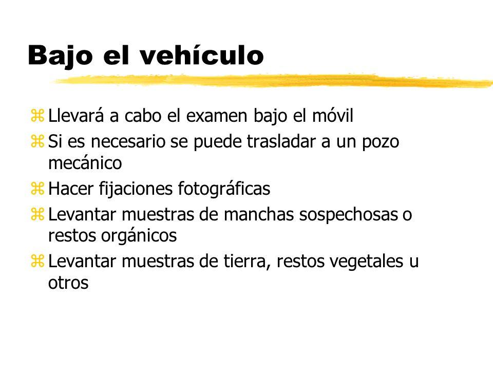 Bajo el vehículo Llevará a cabo el examen bajo el móvil