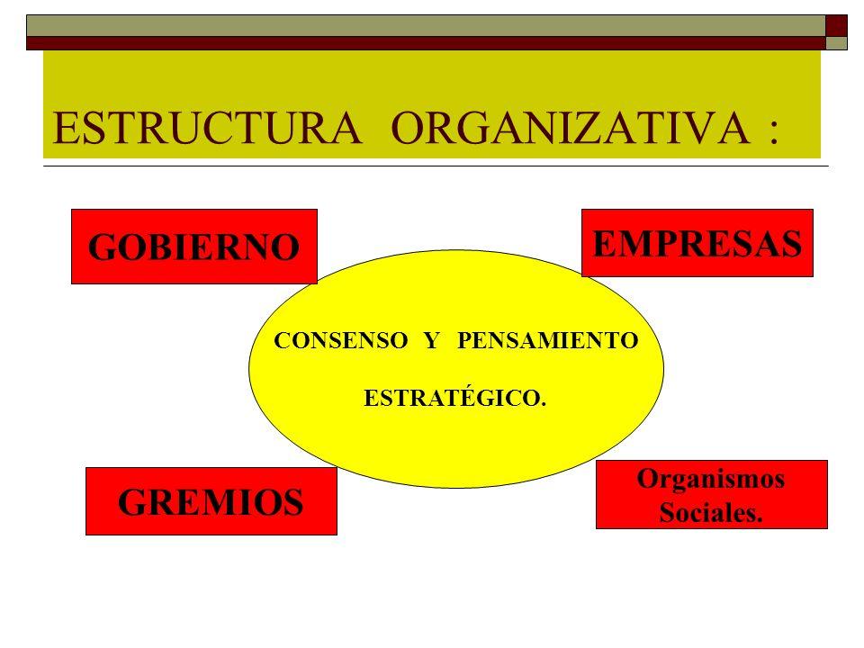 ESTRUCTURA ORGANIZATIVA :