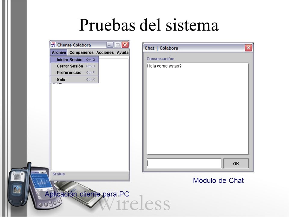 Pruebas del sistema Módulo de Chat Aplicación cliente para PC