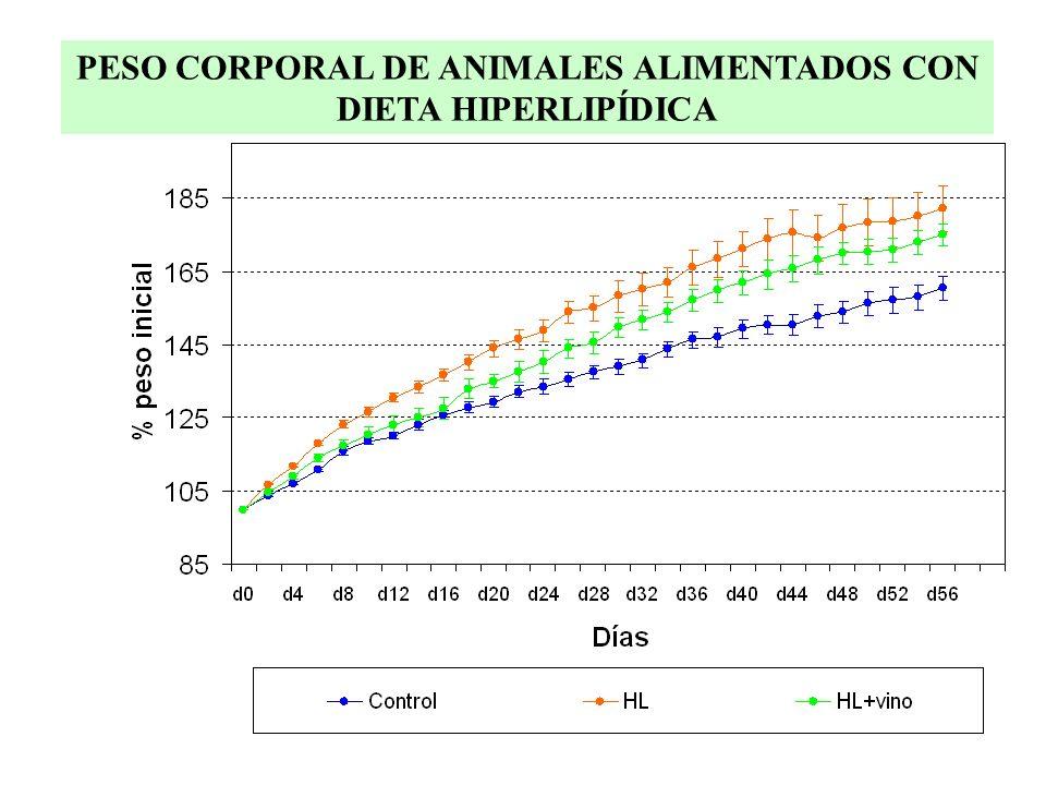 PESO CORPORAL DE ANIMALES ALIMENTADOS CON DIETA HIPERLIPÍDICA