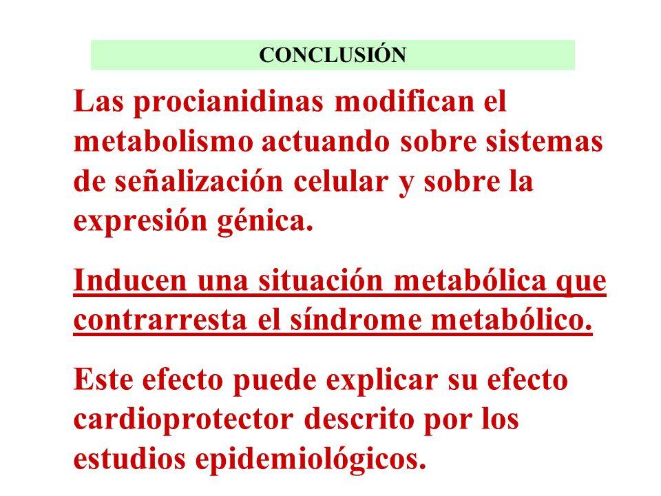 CONCLUSIÓN Las procianidinas modifican el metabolismo actuando sobre sistemas de señalización celular y sobre la expresión génica.