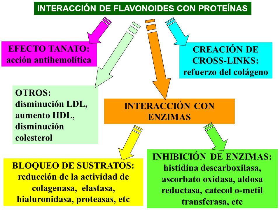 INTERACCIÓN DE FLAVONOIDES CON PROTEÍNAS