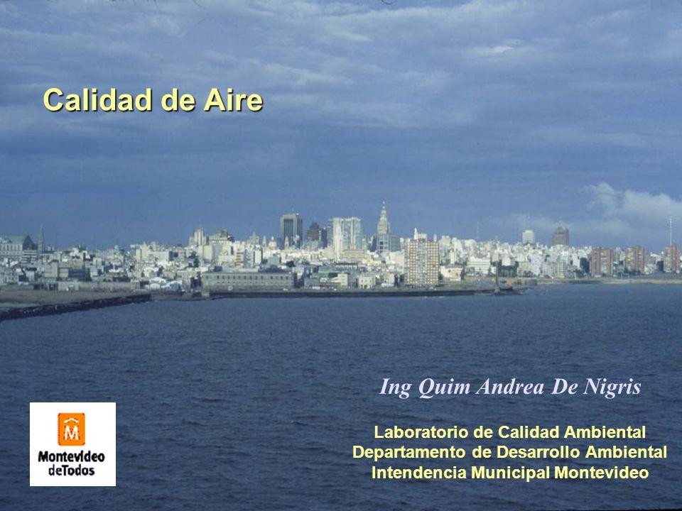 Calidad de Aire Ing Quim Andrea De Nigris