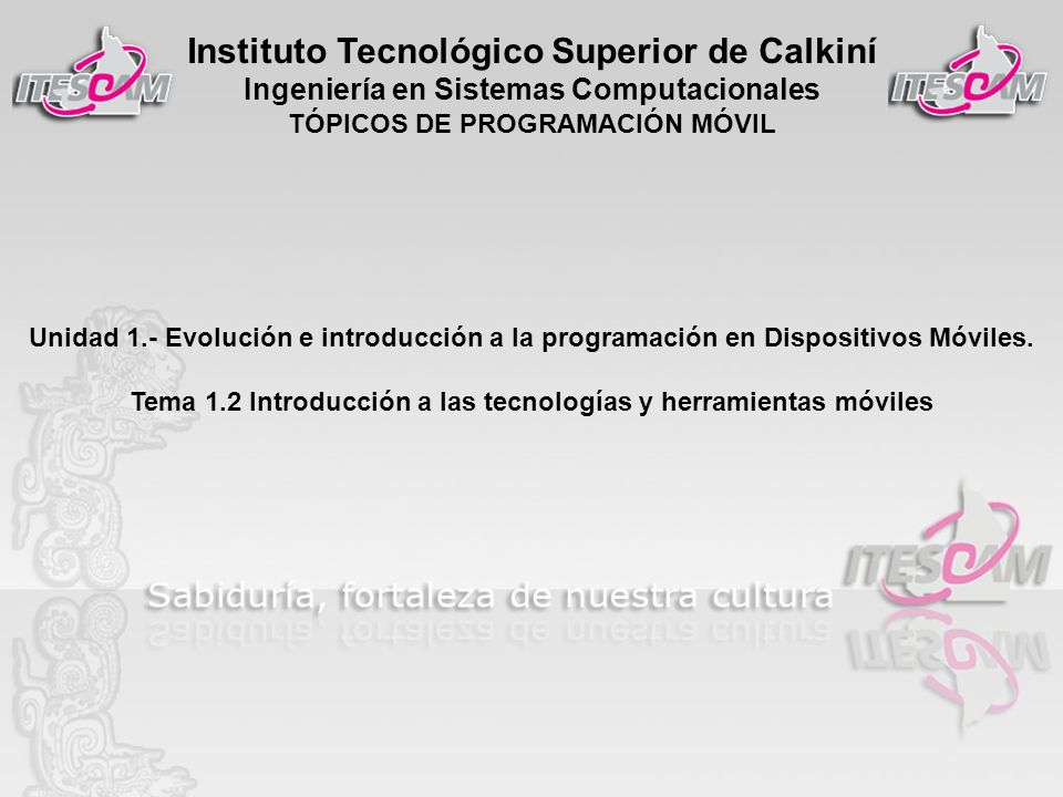 Instituto Tecnológico Superior de Calkiní