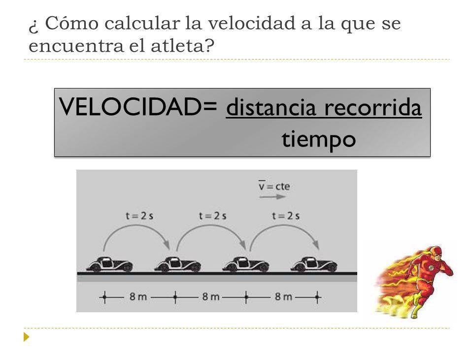 ¿ Cómo calcular la velocidad a la que se encuentra el atleta
