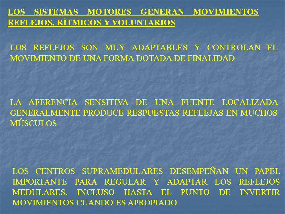 LOS SISTEMAS MOTORES GENERAN MOVIMIENTOS REFLEJOS, RÍTMICOS Y VOLUNTARIOS