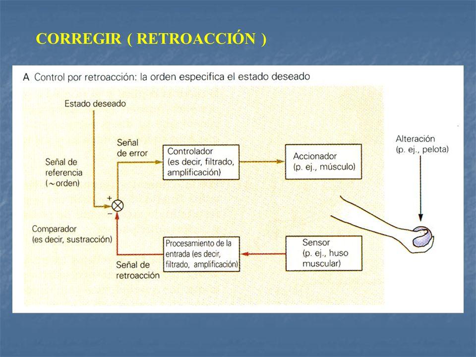 CORREGIR ( RETROACCIÓN )
