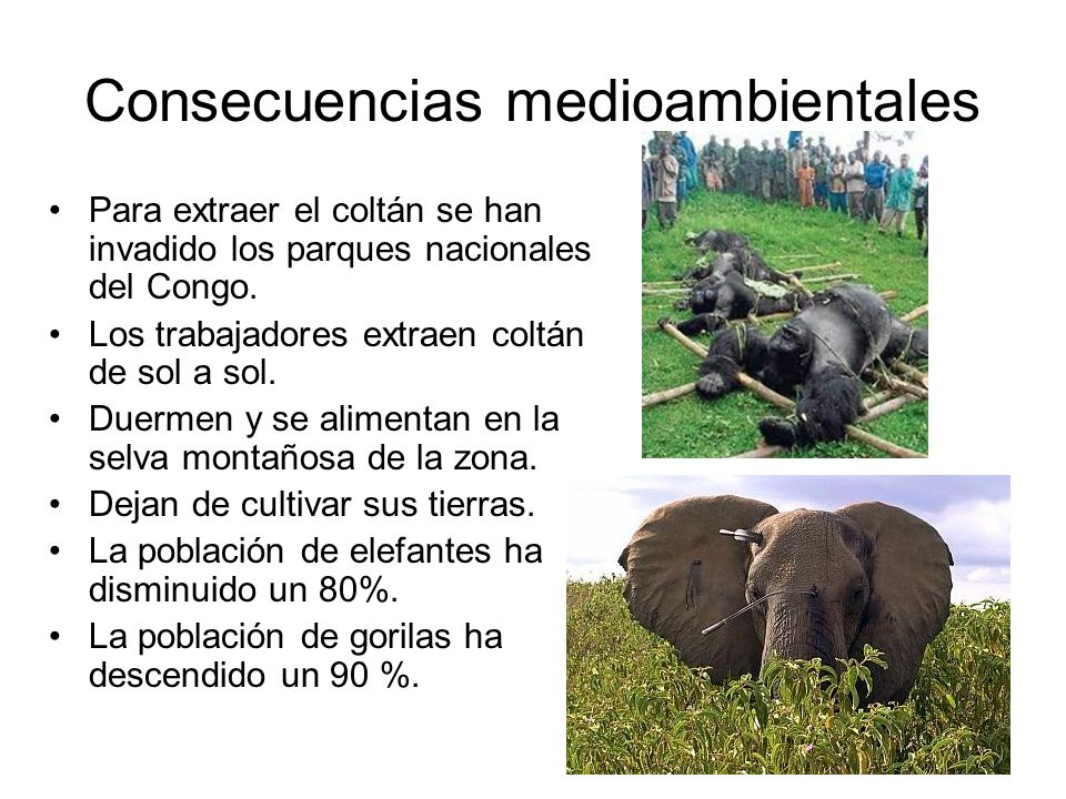 Consecuencias medioambientales
