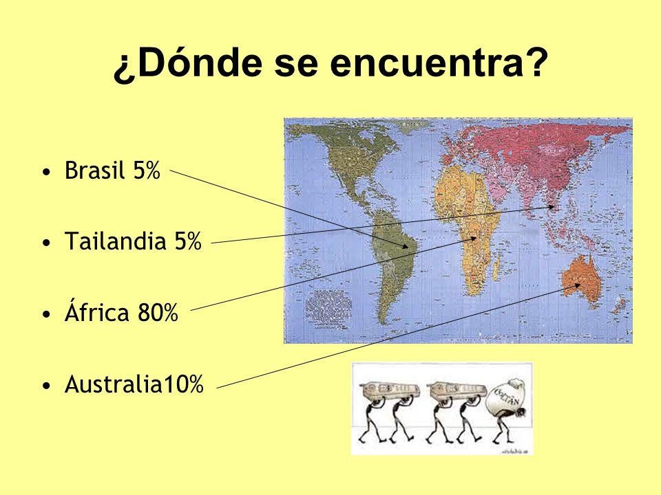 ¿Dónde se encuentra Brasil 5% Tailandia 5% África 80% Australia10%