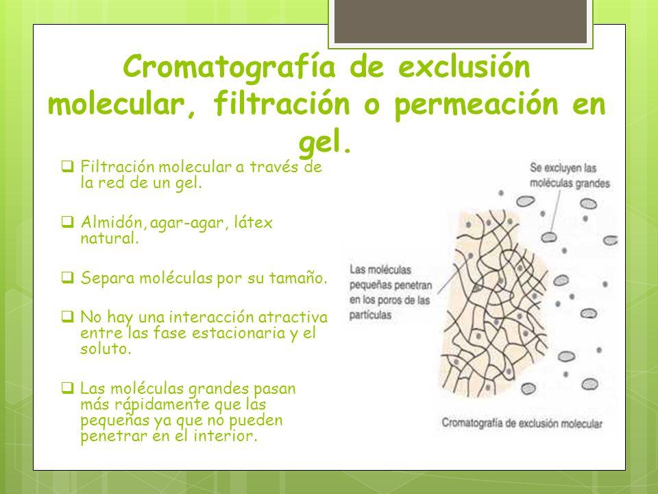 Cromatografía de exclusión molecular, filtración o permeación en gel.