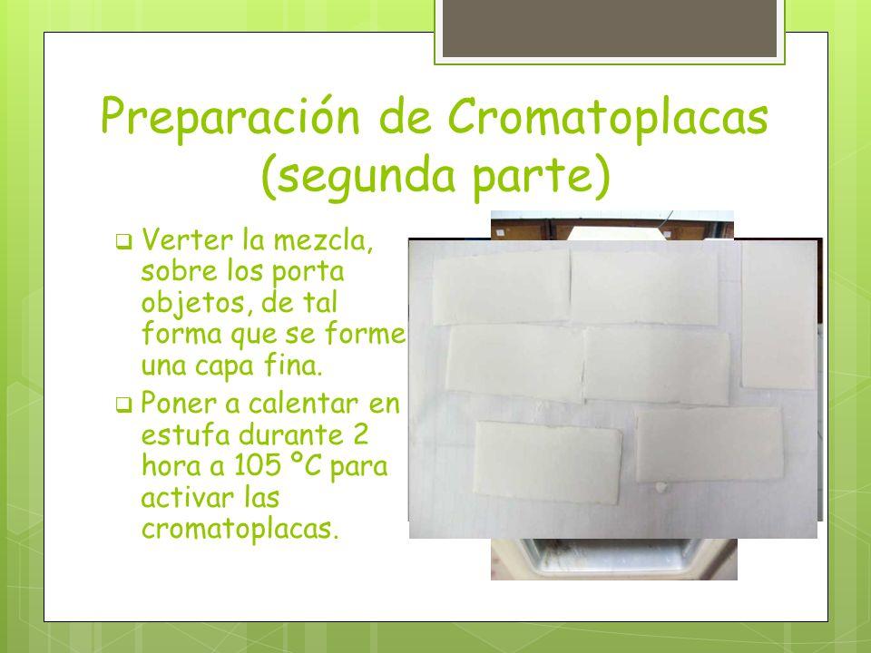 Preparación de Cromatoplacas (segunda parte)