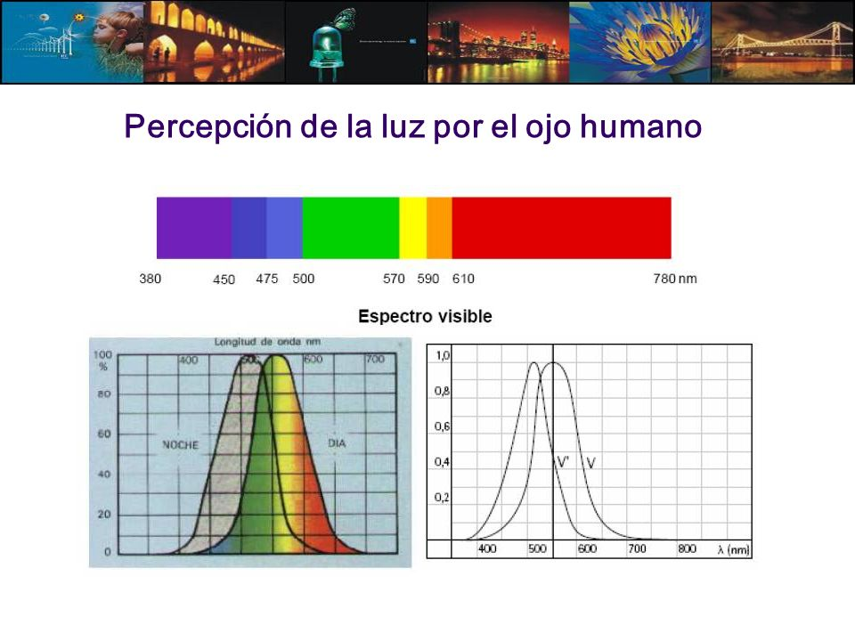 Percepción de la luz por el ojo humano