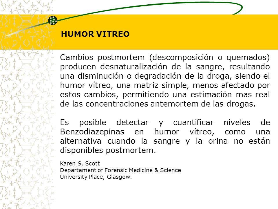 HUMOR VITREO