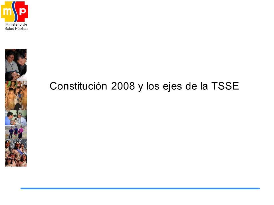 Constitución 2008 y los ejes de la TSSE