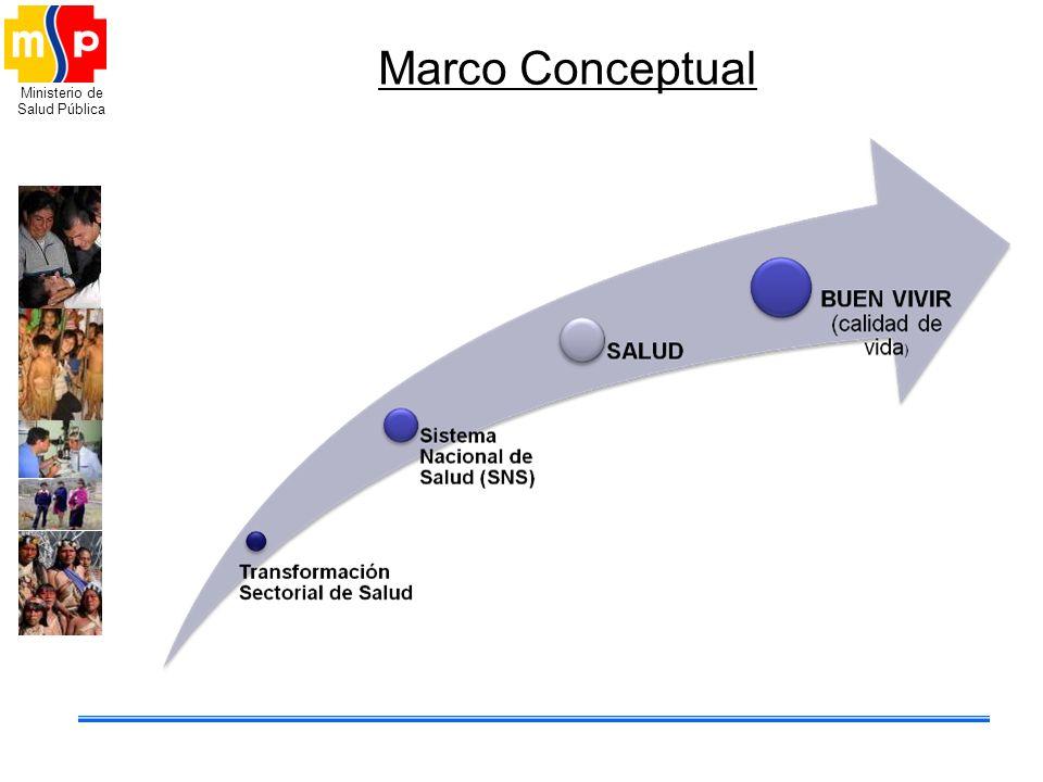 Marco Conceptual Marco: Lo que guía es el modelo de atención