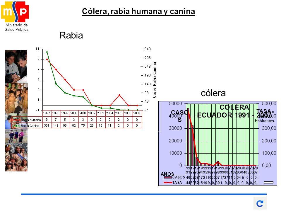 Cólera, rabia humana y canina