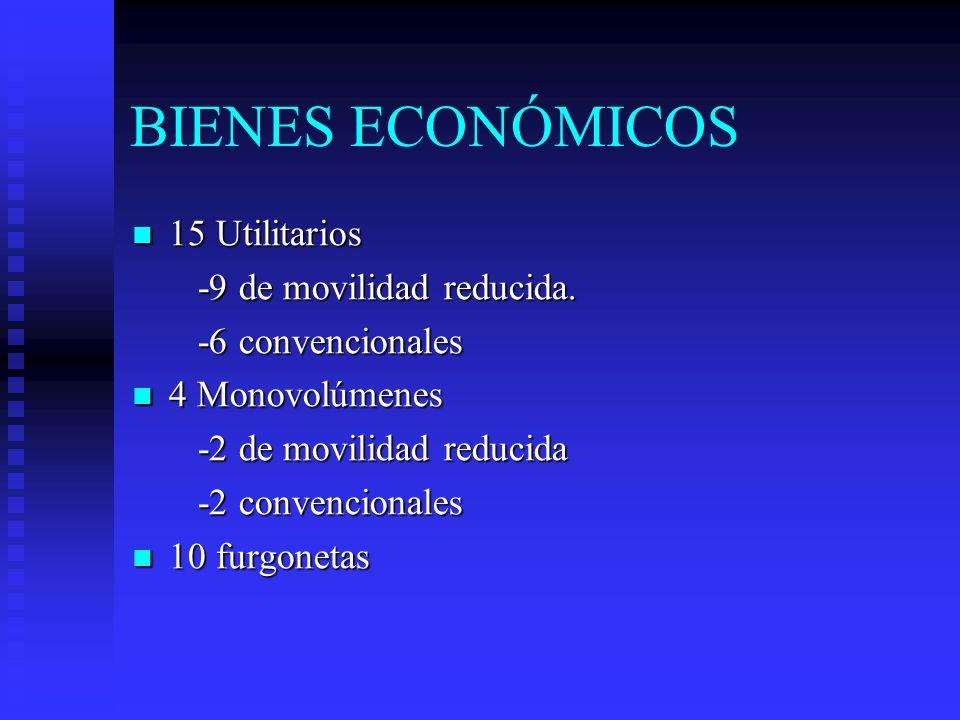 BIENES ECONÓMICOS 15 Utilitarios -9 de movilidad reducida.