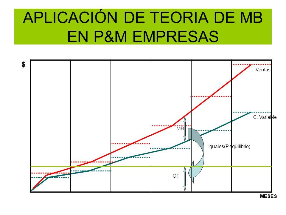 APLICACIÓN DE TEORIA DE MB EN P&M EMPRESAS