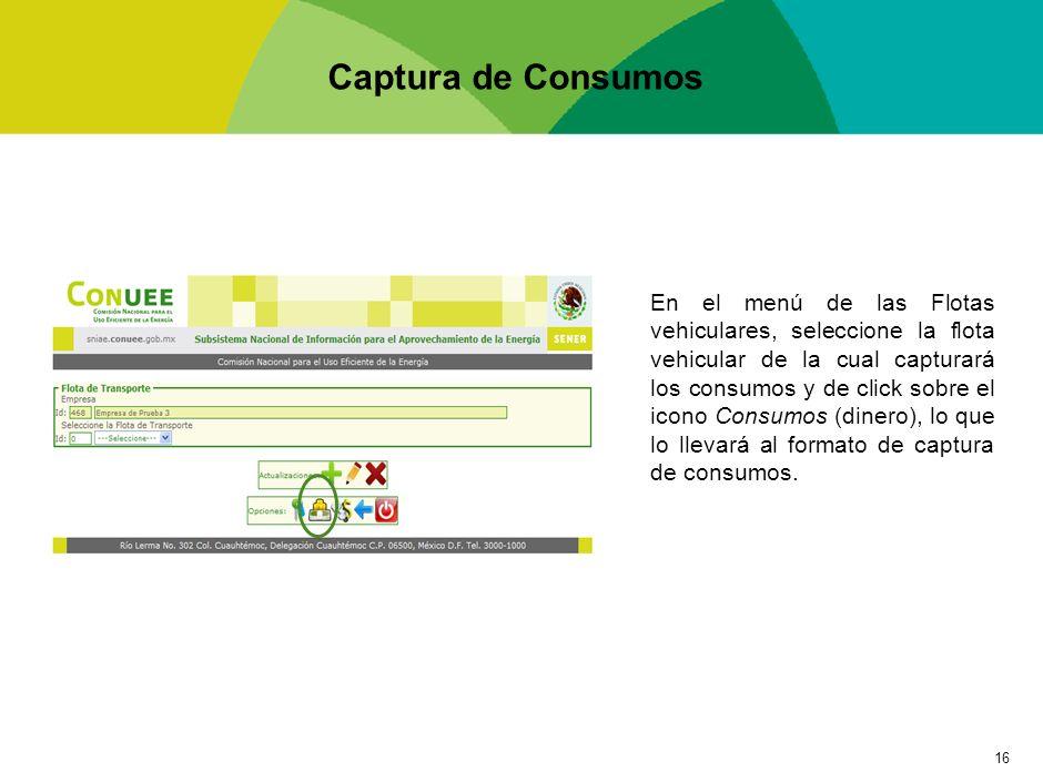 Captura de Consumos