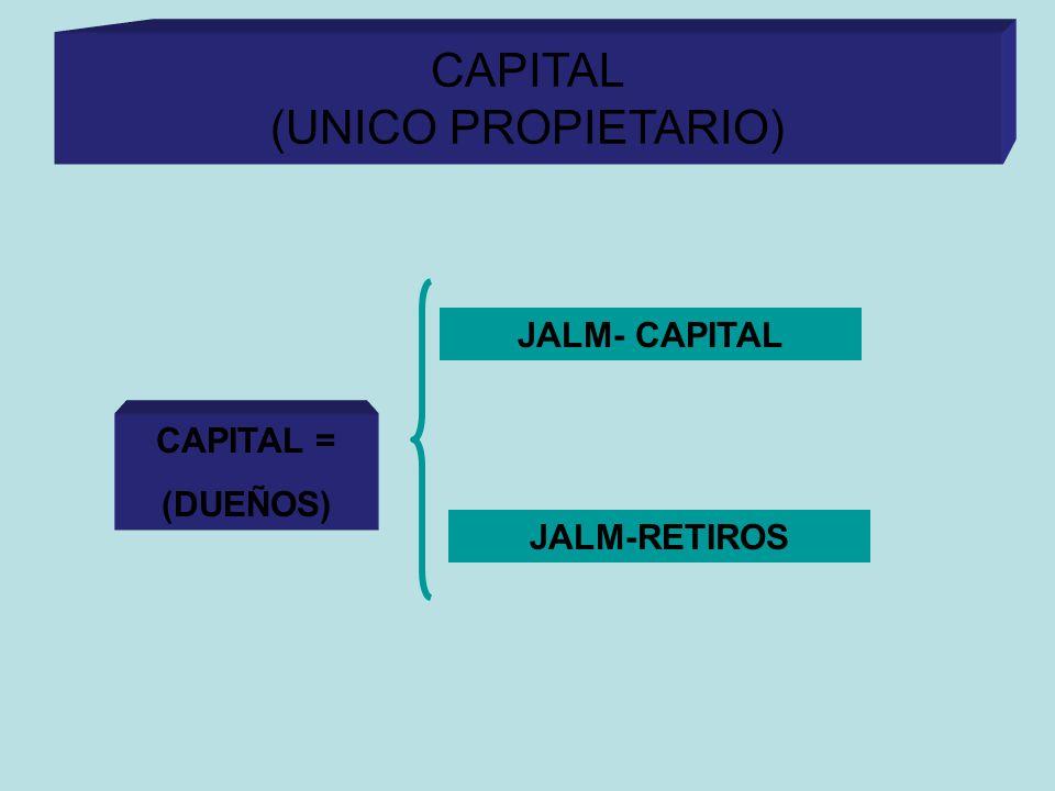 CAPITAL (UNICO PROPIETARIO)