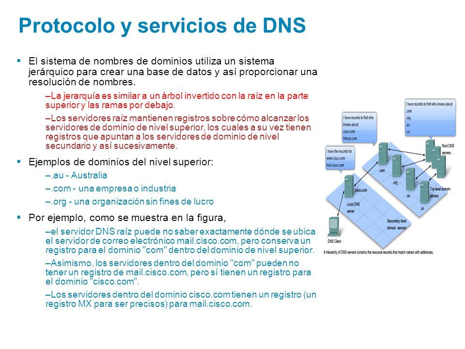 Protocolo y servicios de DNS