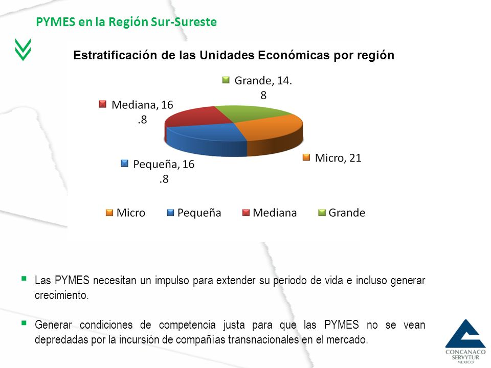 PYMES en la Región Sur-Sureste