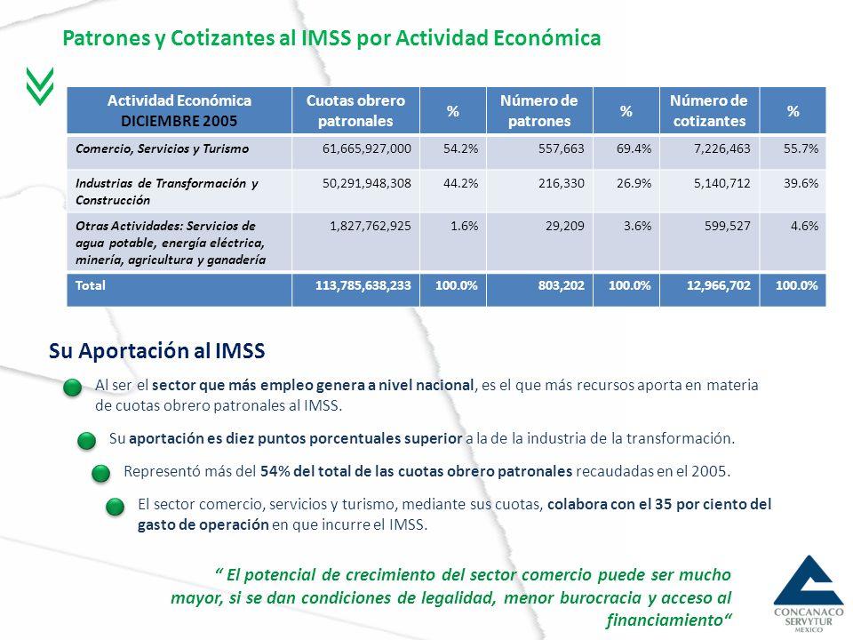 Patrones y Cotizantes al IMSS por Actividad Económica