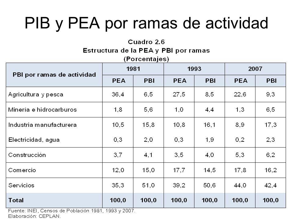 PIB y PEA por ramas de actividad