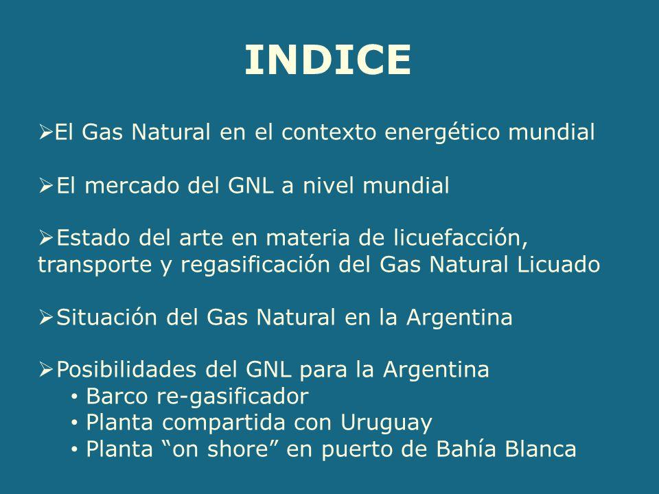 INDICE El Gas Natural en el contexto energético mundial