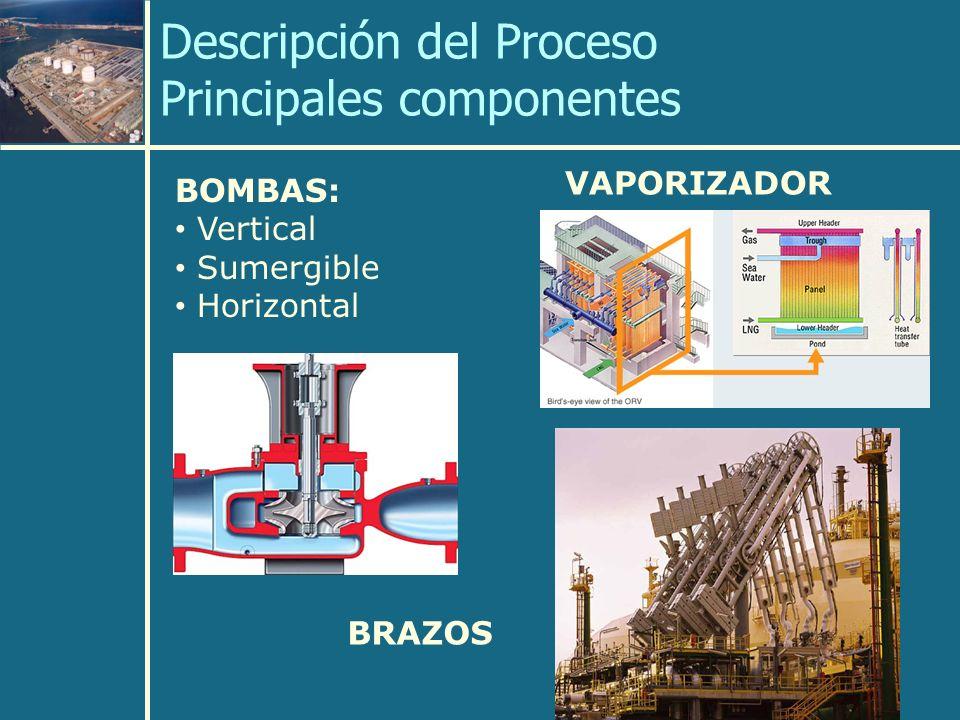 Descripción del Proceso Principales componentes