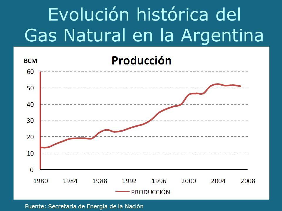 Evolución histórica del Gas Natural en la Argentina