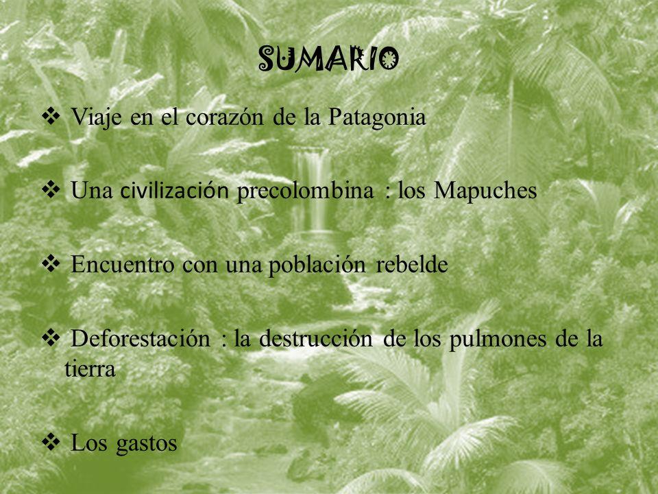 SUMARIO Viaje en el corazón de la Patagonia