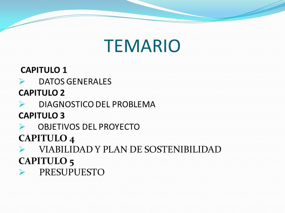 TEMARIO CAPITULO 1 DATOS GENERALES CAPITULO 2 DIAGNOSTICO DEL PROBLEMA