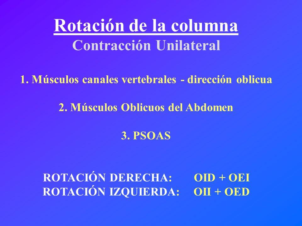 Rotación de la columna Contracción Unilateral