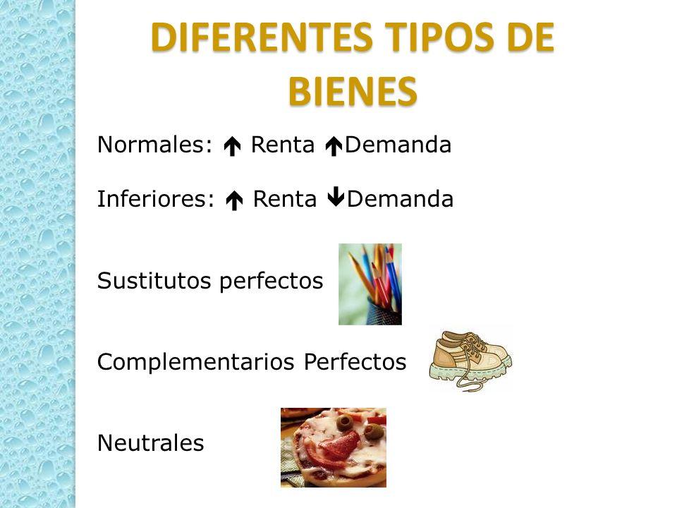 DIFERENTES TIPOS DE BIENES