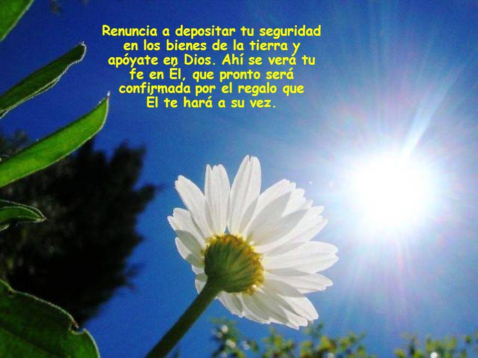 Renuncia a depositar tu seguridad en los bienes de la tierra y apóyate en Dios.