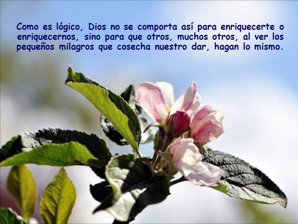 Como es lógico, Dios no se comporta así para enriquecerte o enriquecernos, sino para que otros, muchos otros, al ver los pequeños milagros que cosecha nuestro dar, hagan lo mismo.