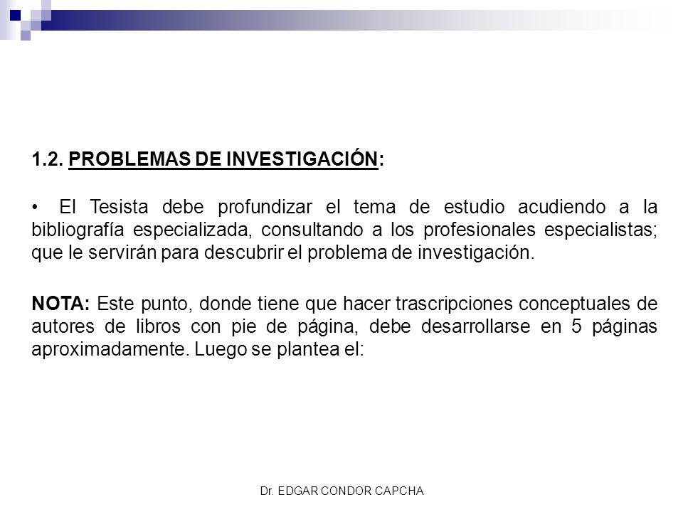 1.2. PROBLEMAS DE INVESTIGACIÓN: