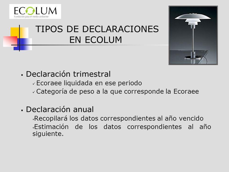 TIPOS DE DECLARACIONES EN ECOLUM