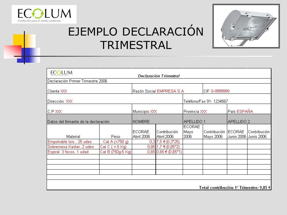 EJEMPLO DECLARACIÓN TRIMESTRAL