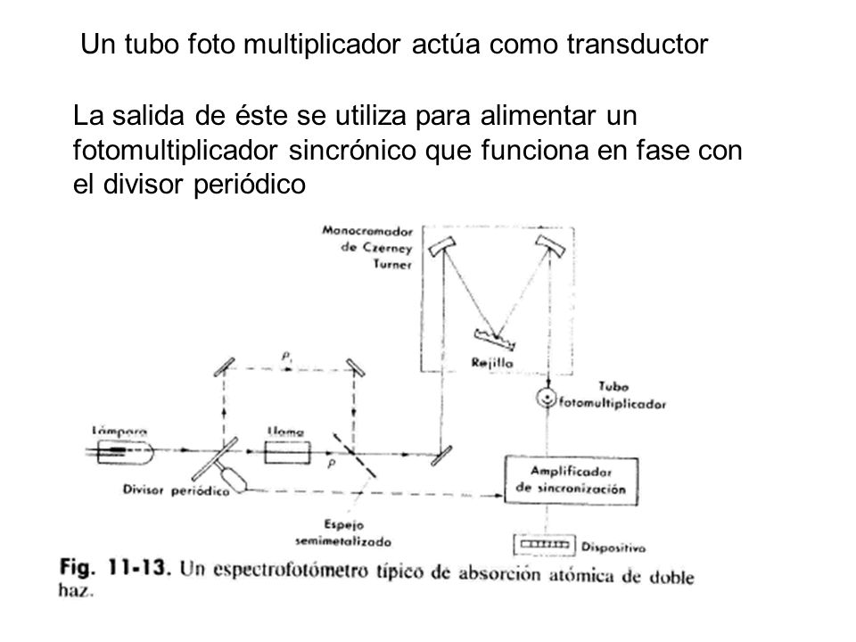 Un tubo foto multiplicador actúa como transductor