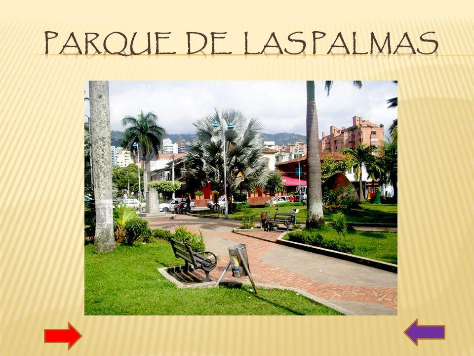 PARQUE DE LAS PALMAS