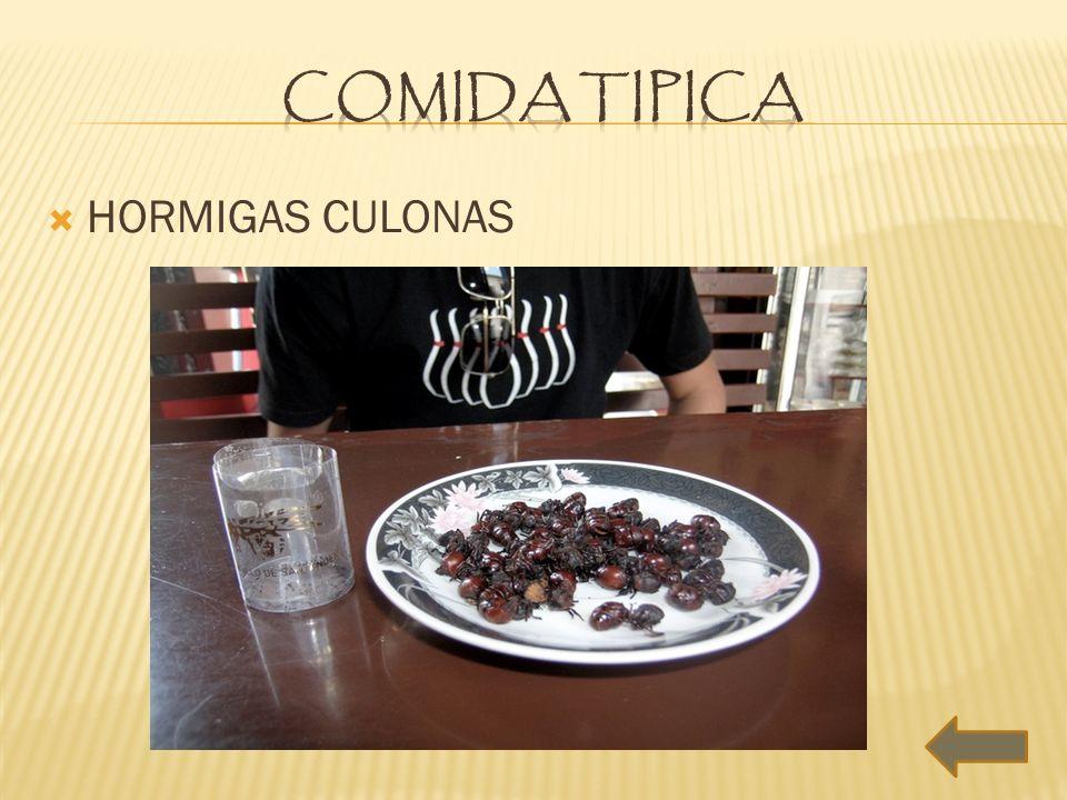 COMIDA TIPICA HORMIGAS CULONAS