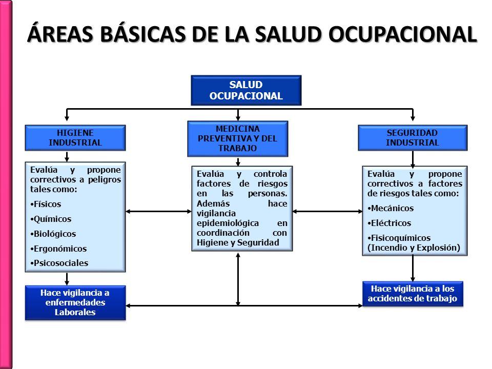 ÁREAS BÁSICAS DE LA SALUD OCUPACIONAL