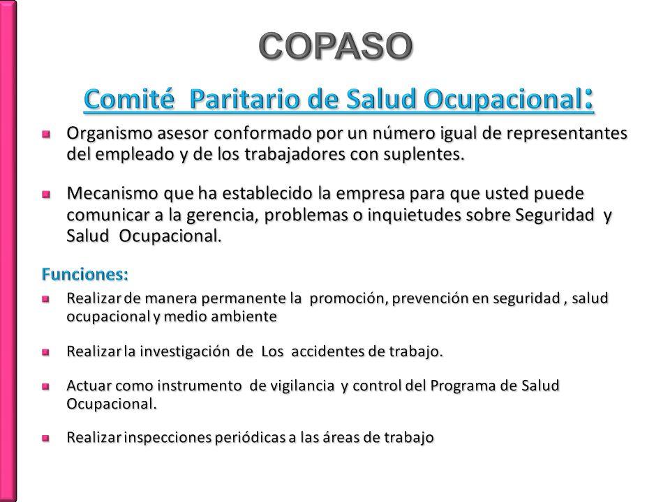 COPASO Comité Paritario de Salud Ocupacional: