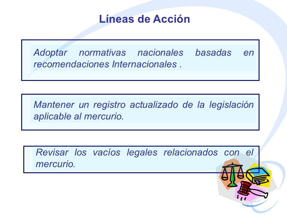 Líneas de Acción Adoptar normativas nacionales basadas en recomendaciones Internacionales .