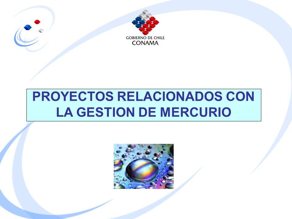 PROYECTOS RELACIONADOS CON LA GESTION DE MERCURIO
