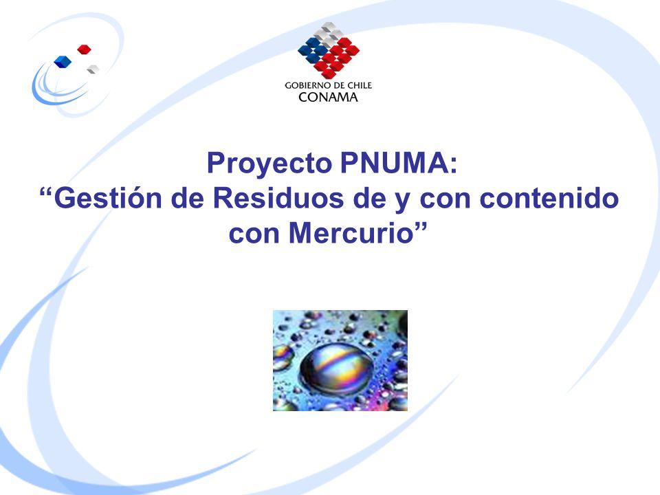 Proyecto PNUMA: Gestión de Residuos de y con contenido con Mercurio